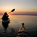 kayaking tour obx Currituck Sound Sanderling